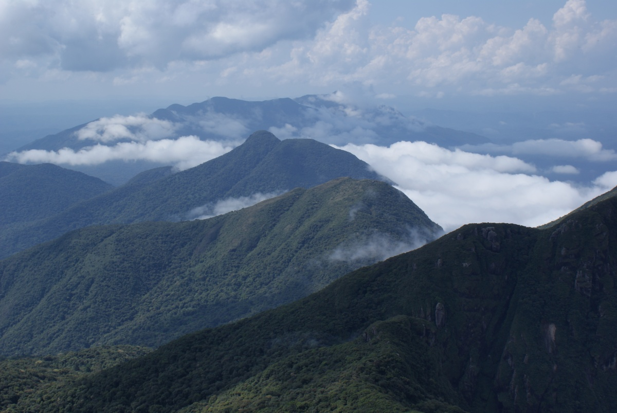 Climbing Caratuva in Brazil's Atlantic Jungle